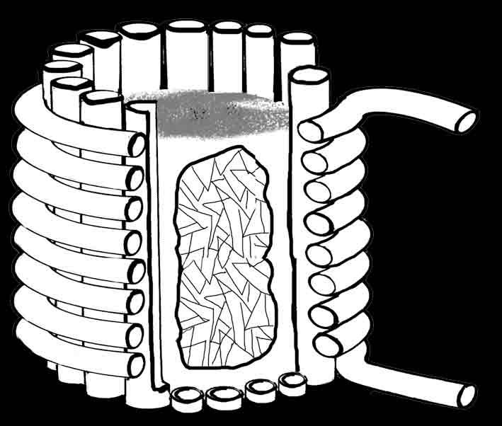 tygiel czaszkowy
