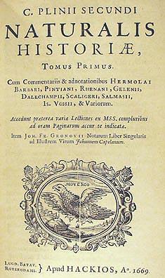 Pliniusz